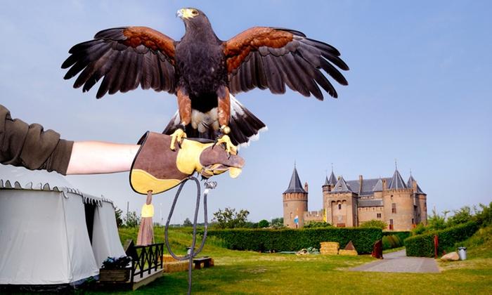 De Valkenier geeft roofvogel shows in het Muiderslot