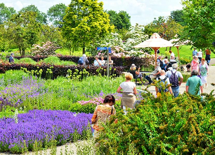 Grootse bloemenpracht in De Tuinen van Appeltern