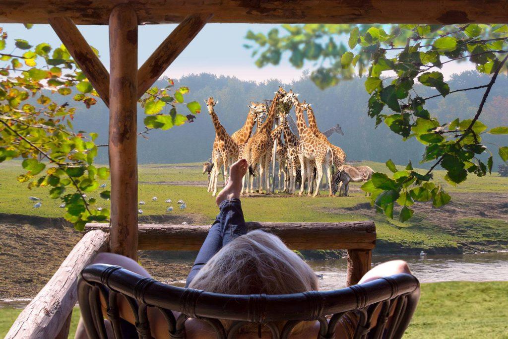 Vanaf de veranda van je gehuurde huisje over de savanne uitkijken op de Beekse Bergen