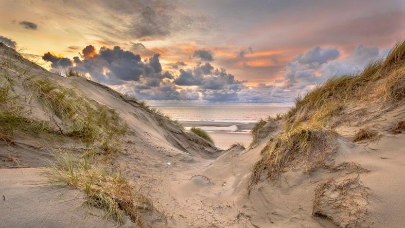 Dagje uit Noord Holland op een stil strand