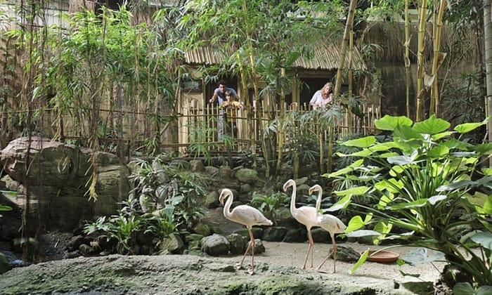 CenterParcs Het Heijderbos